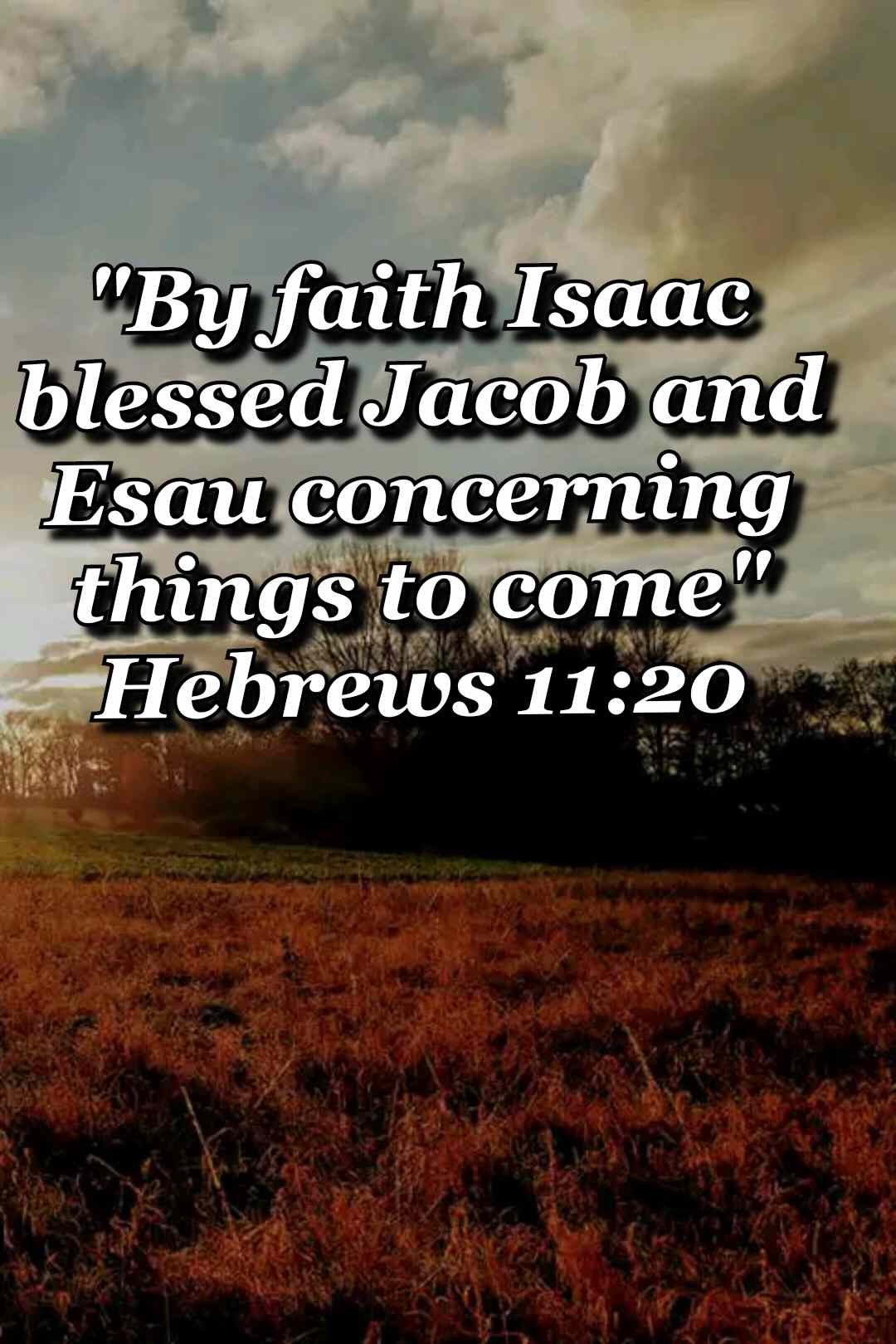 bible varses wallpaper faith (Hebrews 11:20)